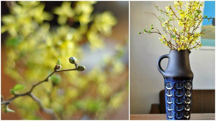 En forårsbuket i en vase fra Søholm