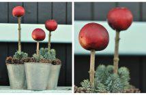 Æbler på pind i krukke