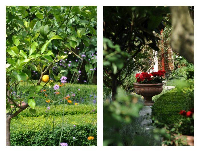 Apotekarns Trädgård i Simrishamn