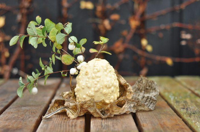 Efterårsdekoration med græskar og snebær