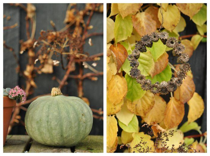 Efterårsdekoration med græskar og valmuekapsler