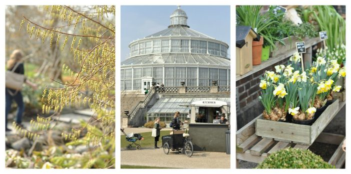 Botanisk have København