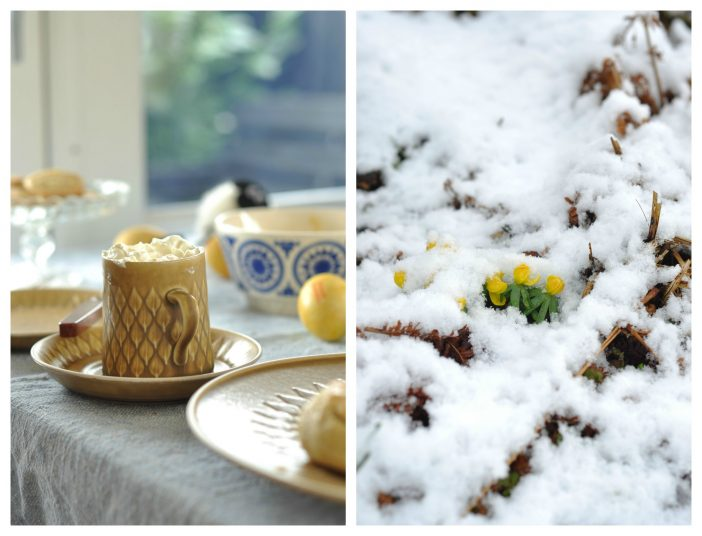 Varm chokolade og erantis i sneen