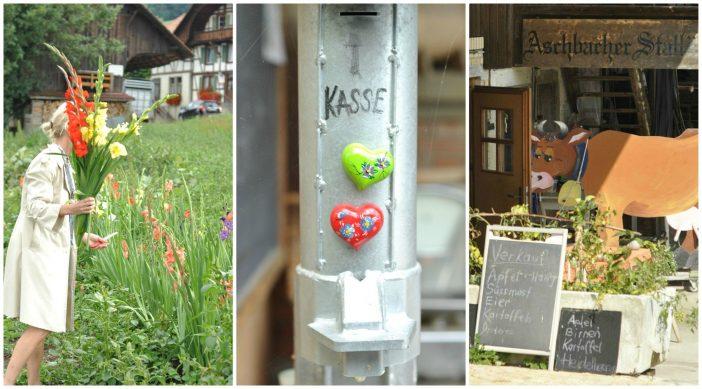 Gårdbutik og pluk selv blomster
