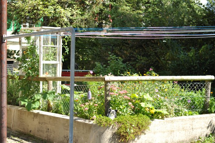 Minidrivhus - også kaldet et tomathus - af gamle vinduer