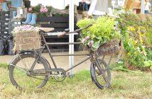 cykel med grønt
