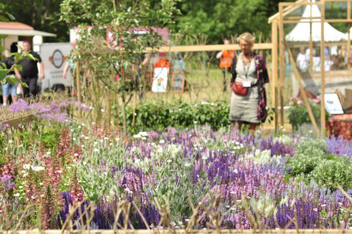 Insektvenlig have på Cph Garden 2019